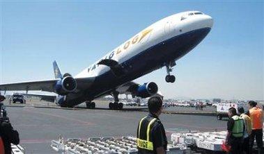 tippy funny plane